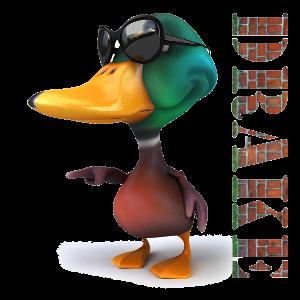 Drake cool ducky logo