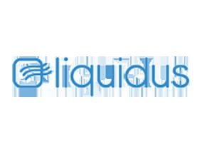 Liquidus Marketing